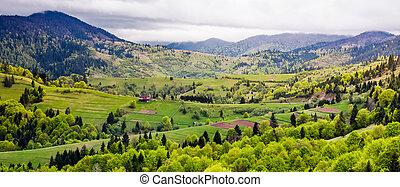 panorama, de, carpathian, área rural, en, primavera