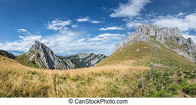 panorama, de, el tyrol, máximos apogeos de montaña, en, seco, pradera, en, otoño