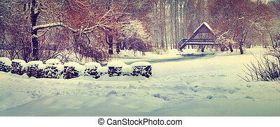 panorama, de, les, premier, chute neige, dans ville, park.