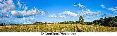 panorama, de, nuvens, e, prado