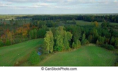 panorama, de, paysage rural