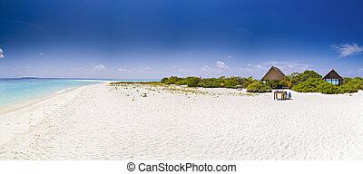 panorama, de, praia tropical, viagem, férias, fundo