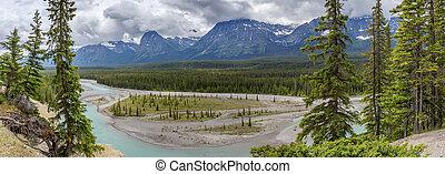 panorama, di, il, athabasca, fiume, -, jasper parco nazionale