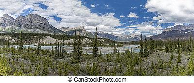 panorama, di, il, athabasca, fiume, -, jasper parco nazionale, canada