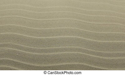 Panorama. Dune sand texture. Sandy beach for background. Top...