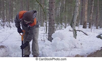Ecologist in the forest digging a soil slit - Panorama....