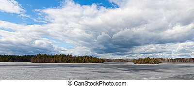 forest lake in the spring