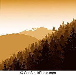 panorama, góry.