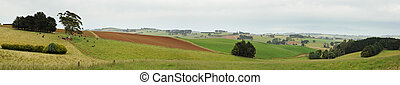 Panorama Gippsland hills
