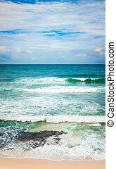 panorama, indiër, ocean., verticaal