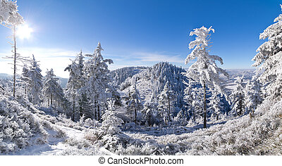 panorama, inverno