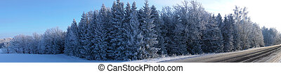 panorama landscape in winter