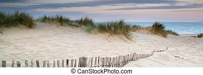 Panorama landscape of sand dunes system on beach at sunrise