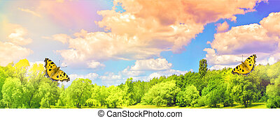 Panorama magnificent landscape with spectacular clouds and butterflies