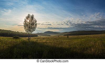 Morning - Panorama. Morning. Summer walks in the Highlands ...