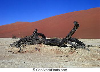 Panorama Namib desert - Panoramic view on Namib desert