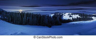 panorama of a beautiful winter landscape at night