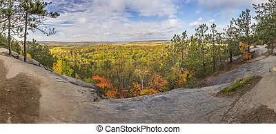 Panorama of a Forest in Fall Colour - Ontario, Canada