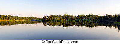 forest lake in summer day