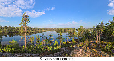 panorama of a forest lake