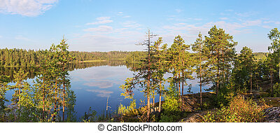 lake on a sunny summer morning