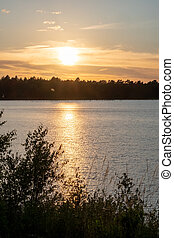 Panorama of a gorgeous sunset at a forest lake