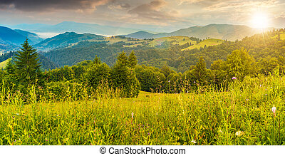 panorama of a meadow in mountains at sunset