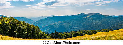 panorama of a mountainous landscape. grassy meadow down the...