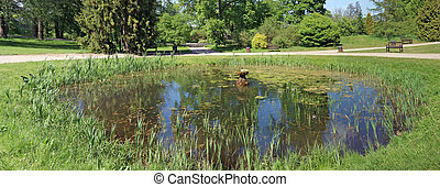Panorama of a small round rural pond with still water, ...