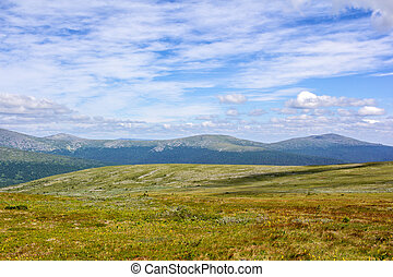 Panorama of a summer sunny morning in the Ural mountains.
