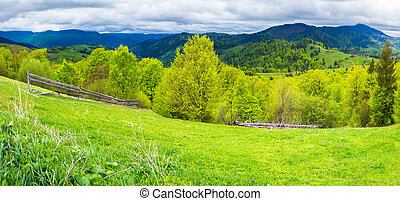 panorama of agricultural area in mountains