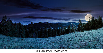panorama of alpine forest glade at night in full moon light....