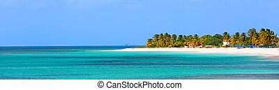 panorama of beautiful caribbean island with turquoise lagoon, palm trees and white sand beach at anguilla island