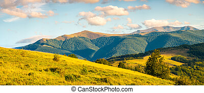 panorama of autumn countryside with grassy rolling hills....