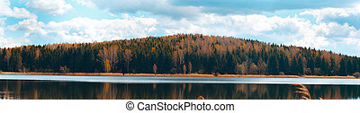 Panorama of autumn forest on a sunny day