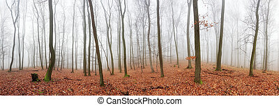 Panorama of Autumn forest with trees at mist