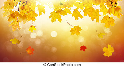 Autumn golden abstract background with bokeh light and colorful fall leaves.