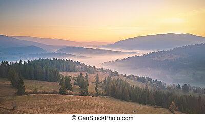 Panorama of autumn mountains. Trees on sunrise hills in fog.