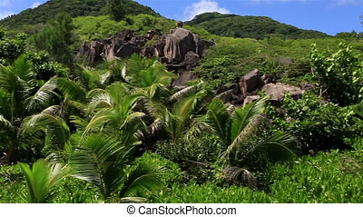 Panorama of beach Grande Anse. Island of La Digue in...