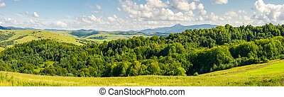 panorama of beautiful autumn countryside. forest behind the...