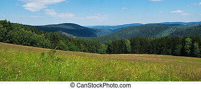 Panorama of Bohemian Forest in the springtime.