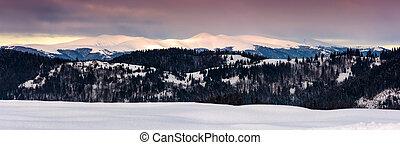 panorama of Borzhava mountain ridge in winter
