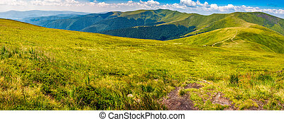 panorama of Carpathian mountain ridge - panoramic summer...