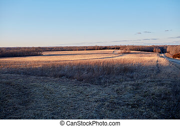 Panorama of cold grassy meadow during sunrise
