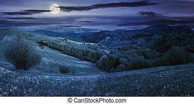 countryside in mountain at night