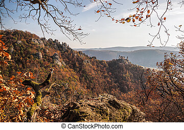 Panorama of Duernstein castle with autumn forest in Austria
