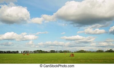 Panorama of field with haystacks near the forest under blue sky with white clouds in slowmotion. 1920x1080.