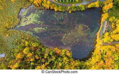 Panorama of forest in the autumn from height a beautiful calm lake in the landscape