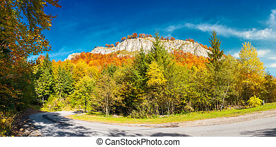 panorama of gorgeous serpentine in autumn forest. huge rocky...