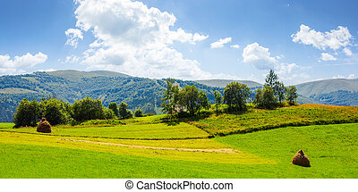 lovely rural summer landscape in mountains - panorama of...
